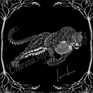 Cheetah Watermark.jpg