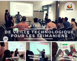 Formation Interne : Intelligence Artificielle et Business Intelligence