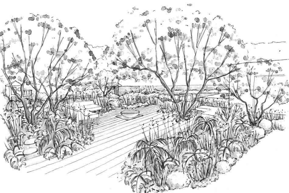 Sheldopn Perspective sketch