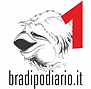 bradipo1.png