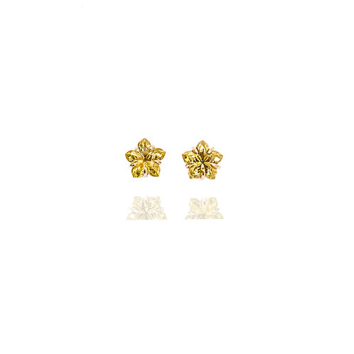 GreenGold Special Star Earrings