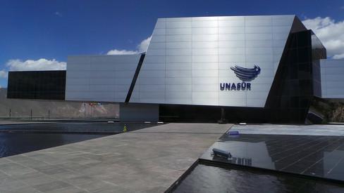 LA UNIÓN DE NACIONES SURAMERICANAS (UNASUR) Y LA CRISIS VENEZOLANA