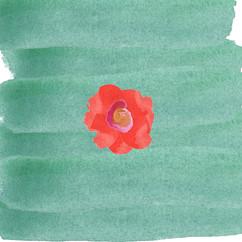 Watercolor flowers-01.jpg