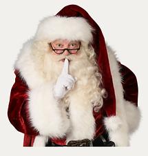 Santa image 1.png