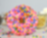 Donut image.png