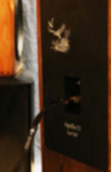 Daedalus-speaker-cable-250.jpg