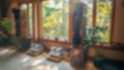 ZEUS in house.jpg