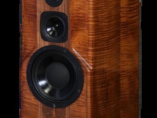 "Apollo Speakers 10"" Loudspeakers"
