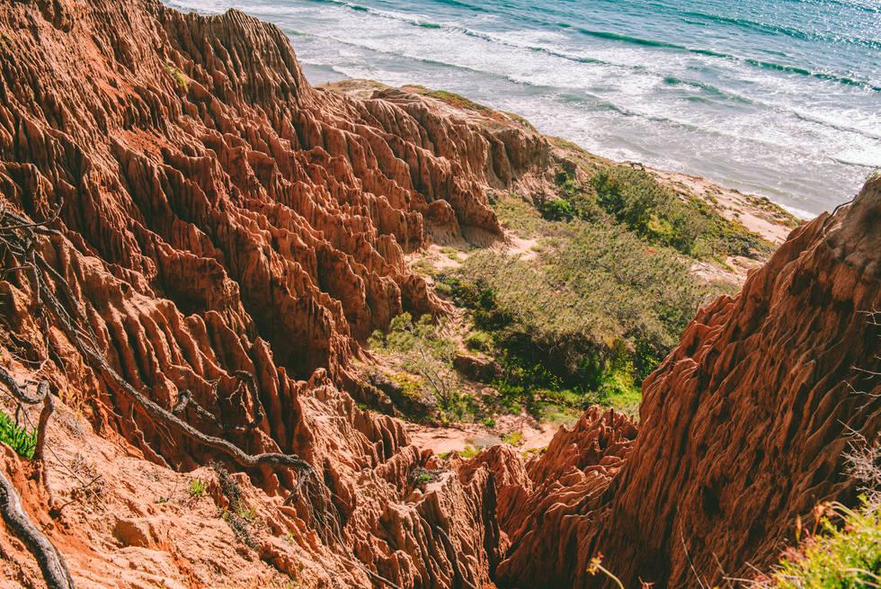 Torrey Pines Nature Preserve, San Diego, CA
