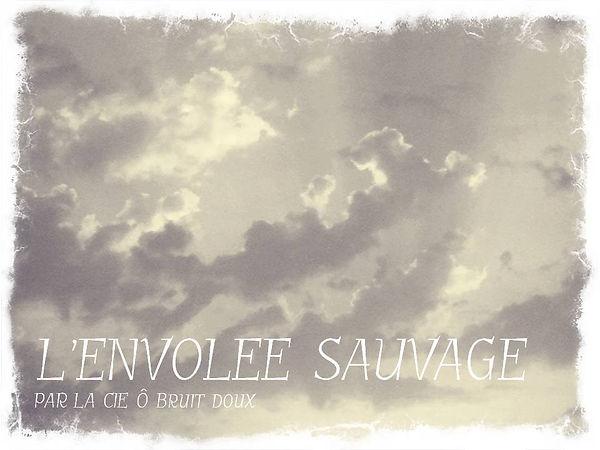 L'ENVOLEE_SAUVAGE.jpg