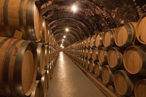 tunnel of barrels.jpeg
