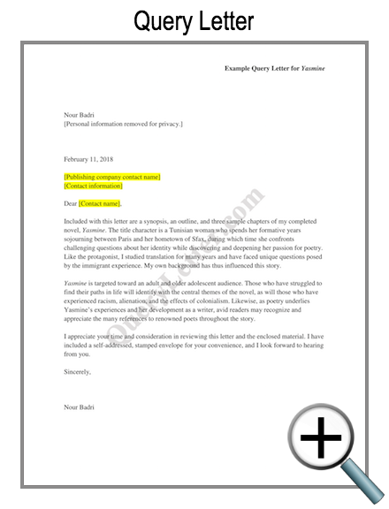 Example query letter