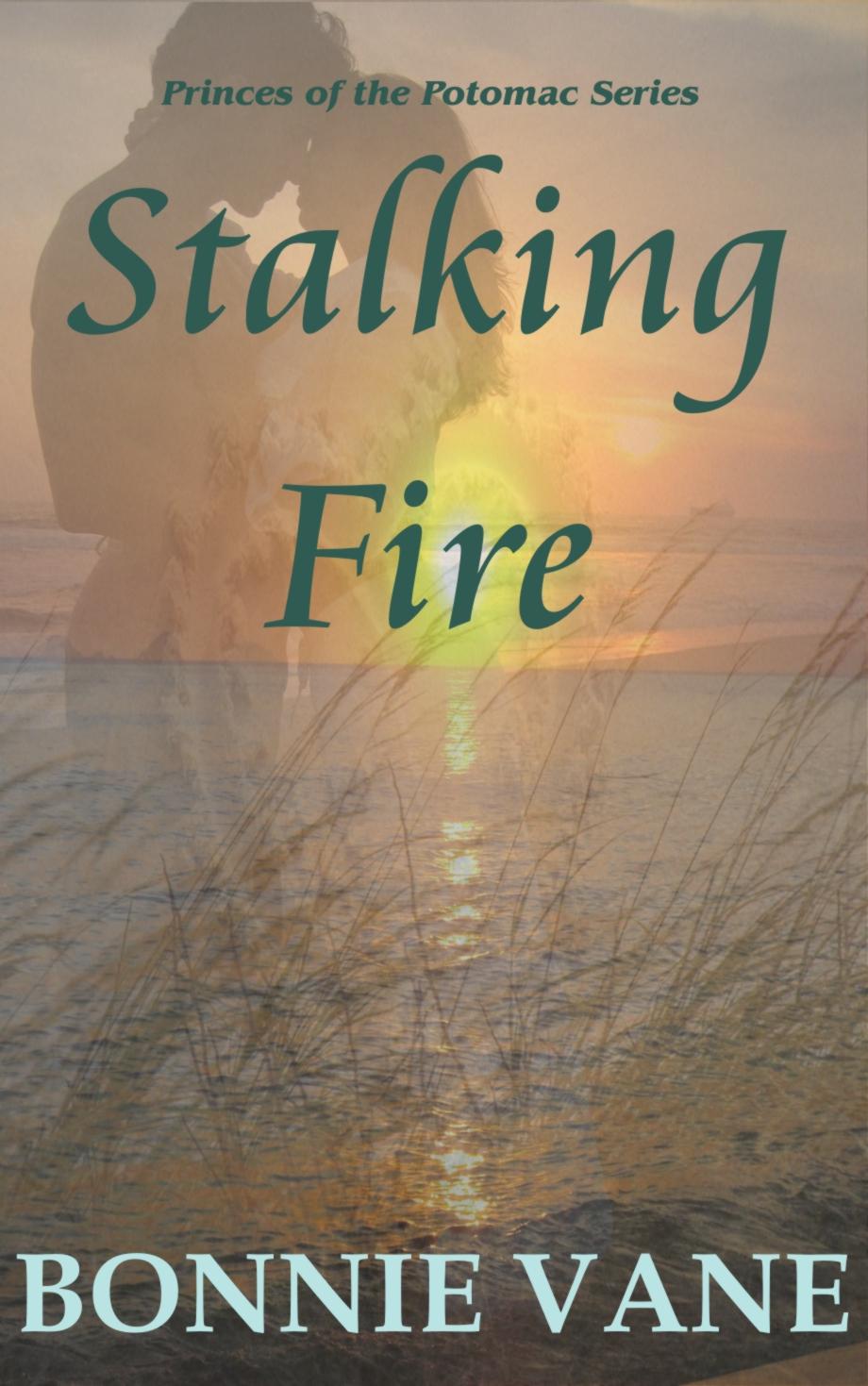 Stalking_Fire