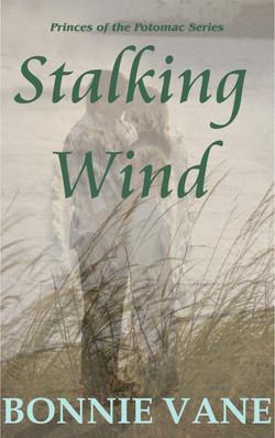 Stalking_Wind