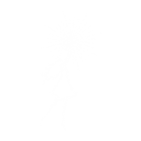 Spejlingen af lyset.png