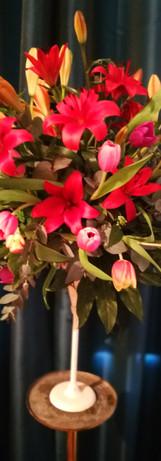 Showroom Flowers