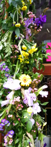 Event Flowers (video)