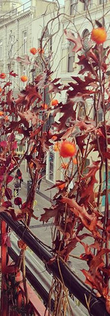 Autumn Installation