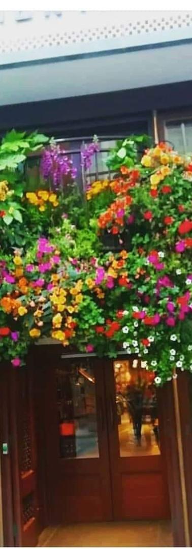 Exterior Flowers