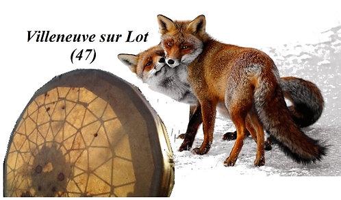 Voyage au Tambour  (47)