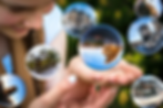 glass-ball-1767291_960_720.webp