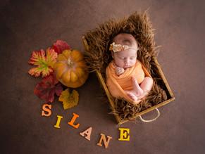 Séance nouveau-né d'automne