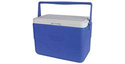 Medium Size Cooler Box