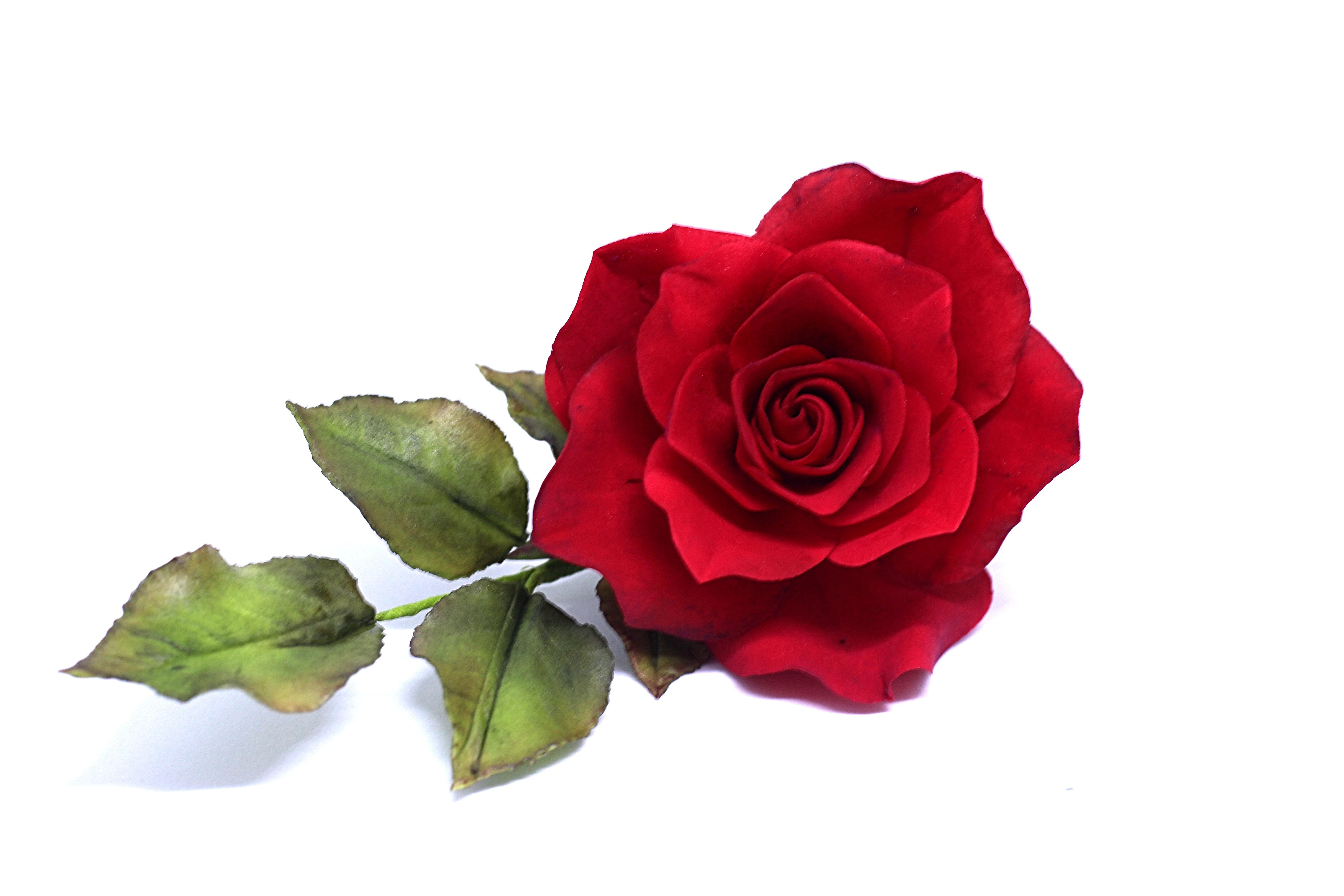 Roses-Sugarpaste Flowers