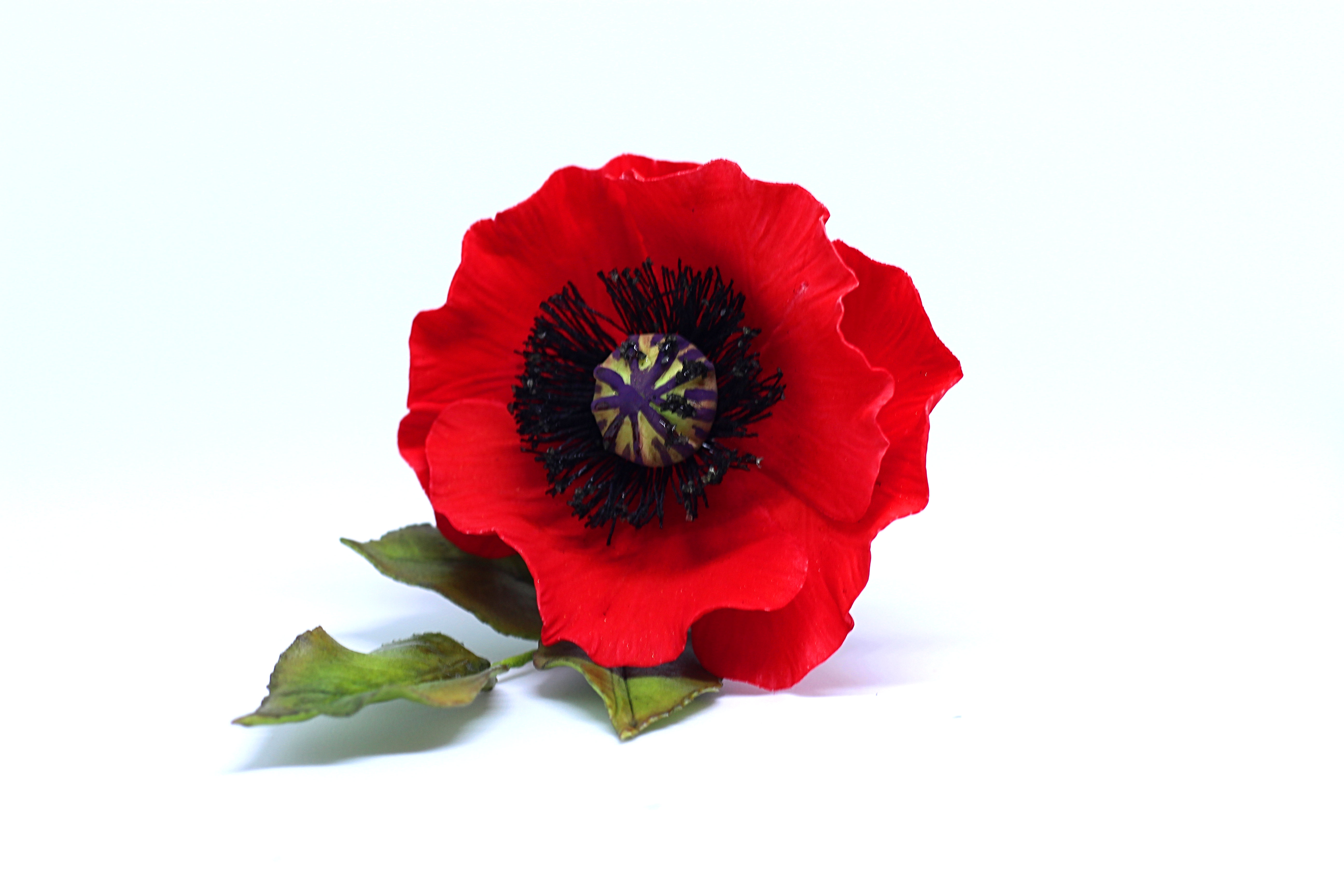 Poppy-Sugarpaste Flowers