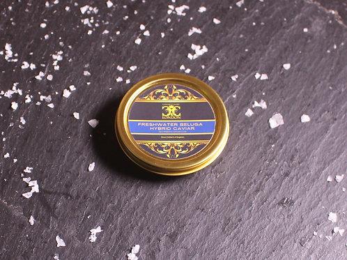 Hybrid Beluga Caviar