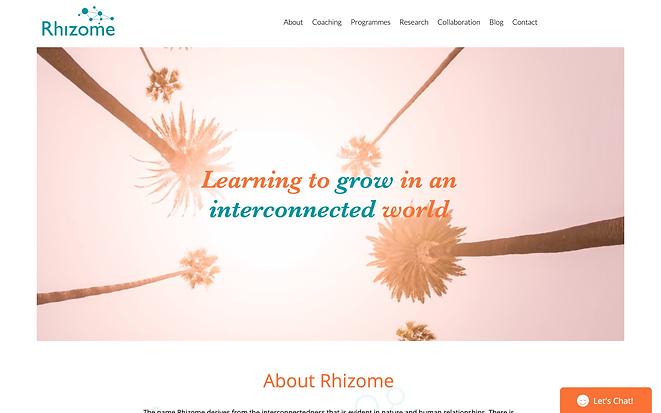 Rhizome Leadership