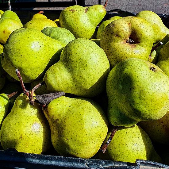 ORGANIC PEARS  BROCKMANS FARM  1kg