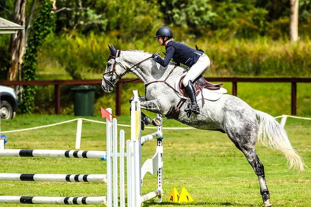 equusbybrittanyGSS-7656.jpg