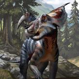 1/18th Einiosaurus procurvicornis