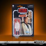 Anakin Skywalker (Peasant Disguise)