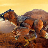 Adasaurus mongoliensis