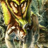 1/18th Chasmosaurus belli
