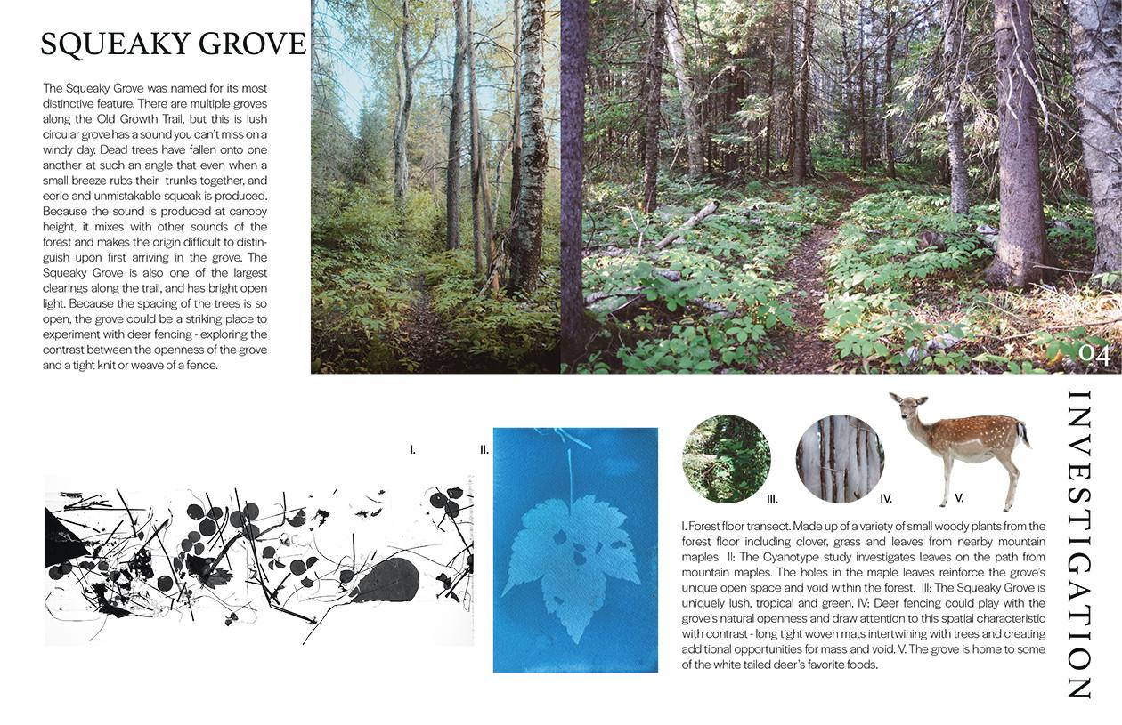 Squeaky Grove