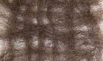 Weave 1_2.JPG