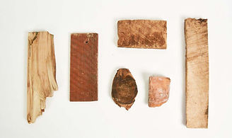 Black Locust Artifacts_Adjusted.jpg