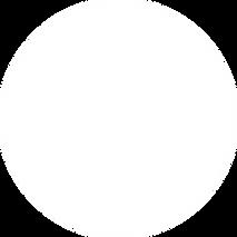 Stats White Circle.png