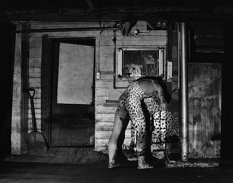 David Guerra Untitled_Wild photograph.jp