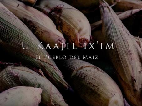 Descendientes del pueblo de maíz.
