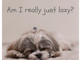 Are you really just lazy?