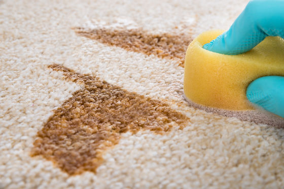 Stain in carpet being cleaned