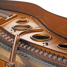 DPA 4061 in Piano.jpg
