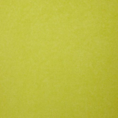 TM209_pistachio.jpg