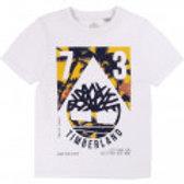 T-shirt en coton biologique TIMBERLAND