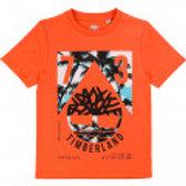 T-shirt TIMBERLAND