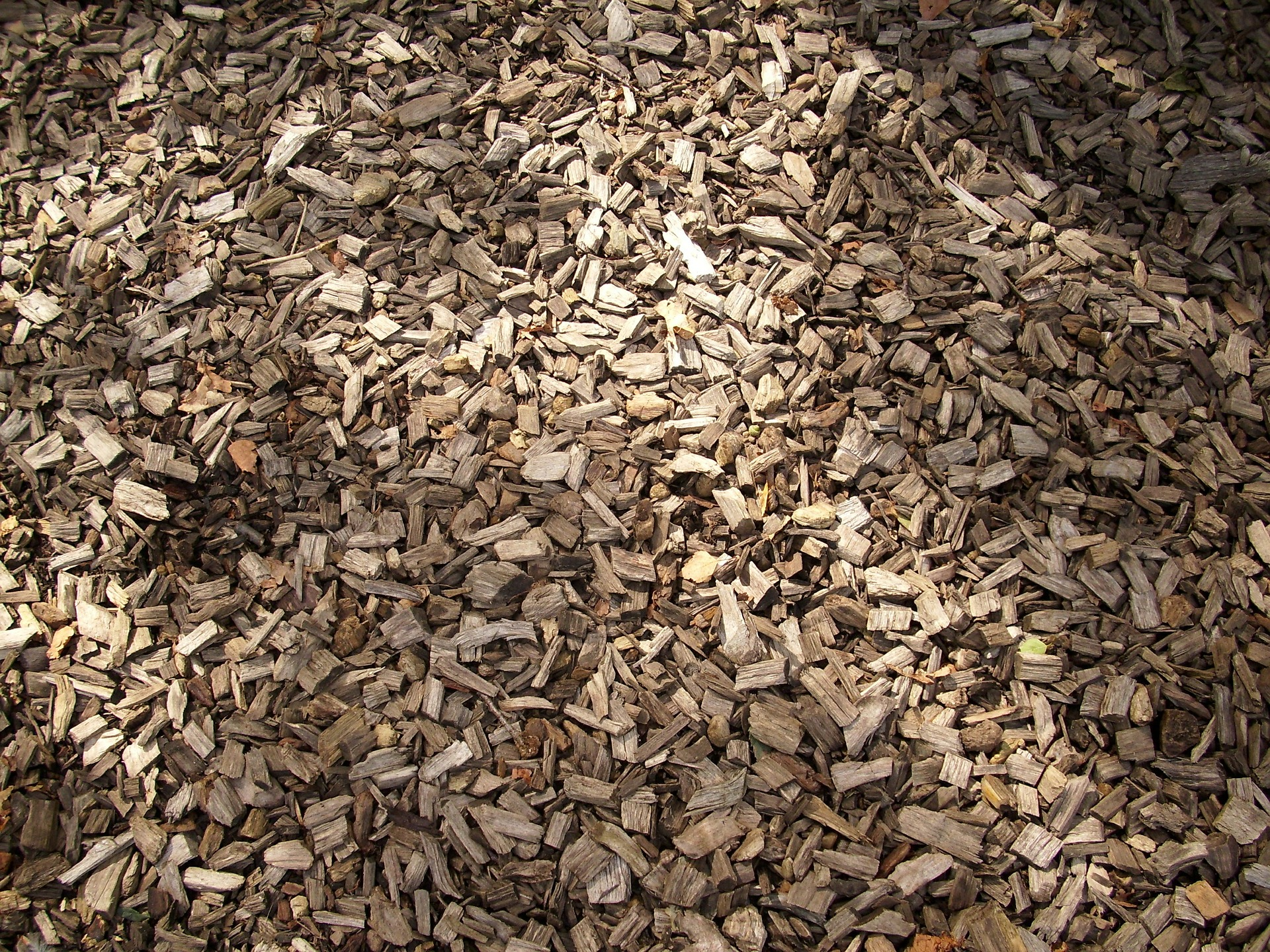 BIOMASA: Woodchip Path